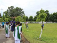 Cleanliness and plantation